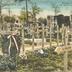Feldzug 1914-15. Deutsche Kriegsgräber auf dem Friedhof zu Rethel
