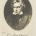 L. v. Beethoven - Freude schöner Götterfunken...